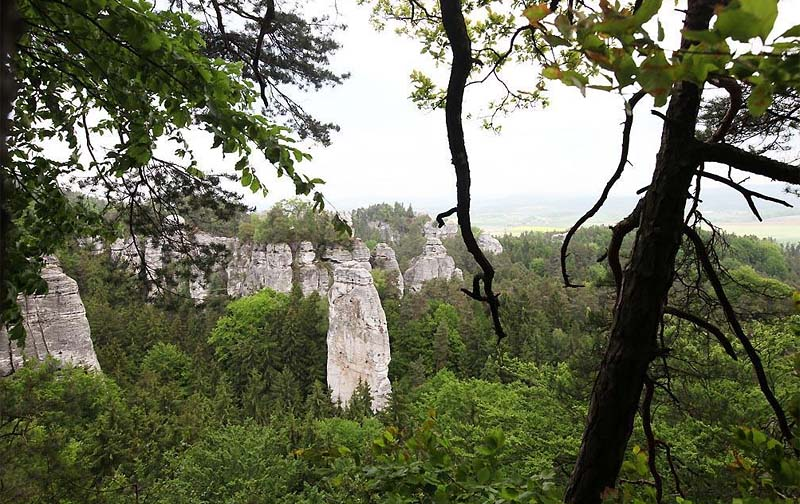 57 - Český Ráj - nice strolls with many beautiful views of the rocks and the castle of Valdštejn at the end of the walk (110 km)